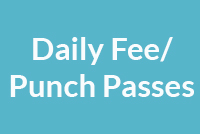 Daily Fee and Punch Passes