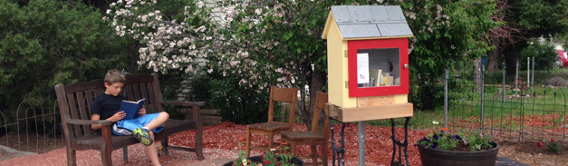 LittleLibrary_Superior