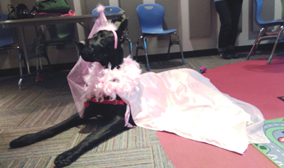 Tru the Great Dane in a pink princess costume.